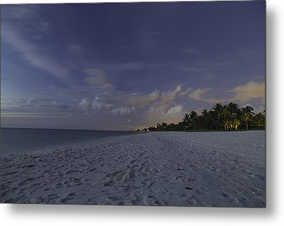 Tropical Winter Metal Print by Christopher L Thomley