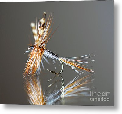 Trout Fly 2 Metal Print