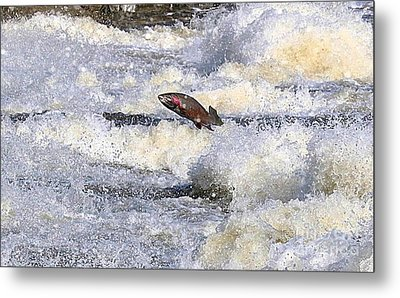 Metal Print featuring the digital art Trout by Robert Pearson