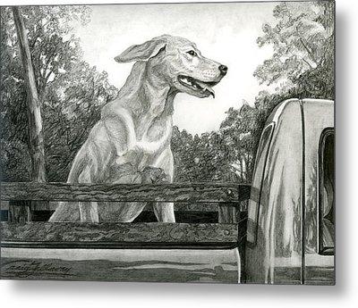 Truck Queen Study Metal Print by Craig Gallaway