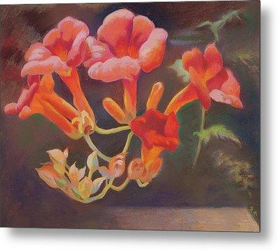 Trumpet Flowers Metal Print