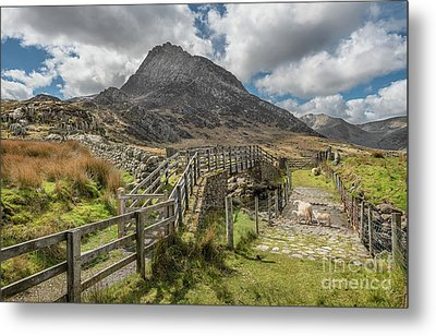 Tryfan And The Ogwen Valley Metal Print by Adrian Evans