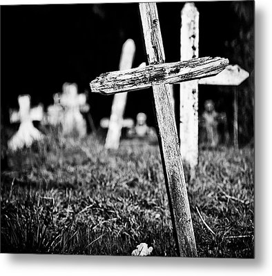 Trying To Find My Way  Metal Print by  Kelly Hayner