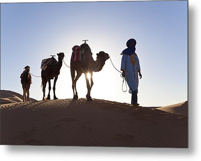 Tuareg Man With Camel Train, Sahara Desert, Morocc Metal Print by Peter Adams