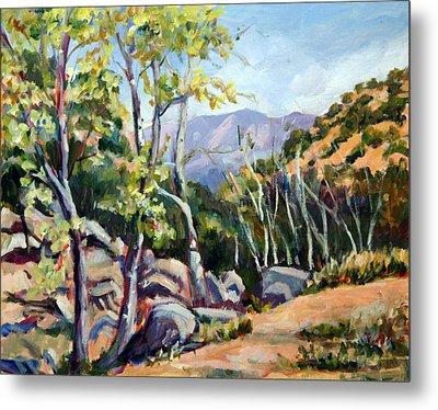 Tucson I Metal Print by Alexandra Maria Ethlyn Cheshire