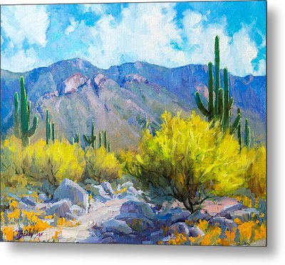 Tucson Mountains Metal Print by Becky Joy