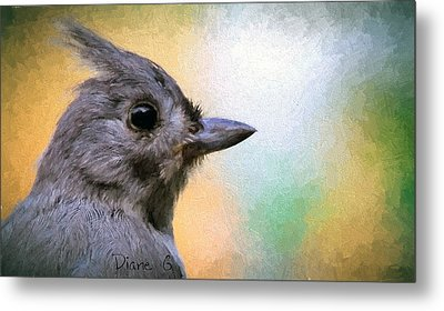 Tufted Titmouse Metal Print by Diane Giurco