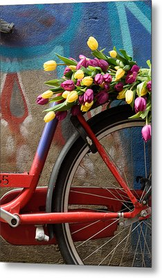 Tulip Bike Metal Print by Phyllis Peterson