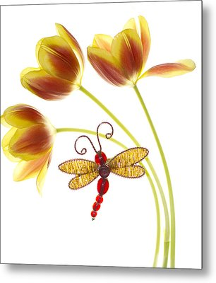 Tulip Dragonfly Metal Print by Rebecca Cozart