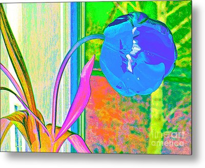 Tulip Dream In The Morning Metal Print