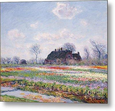 Tulip Fields At Sassenheim Metal Print by Claude Monet