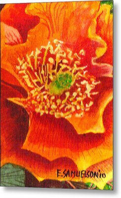 Tulip Prickly Pear Metal Print by Eric Samuelson