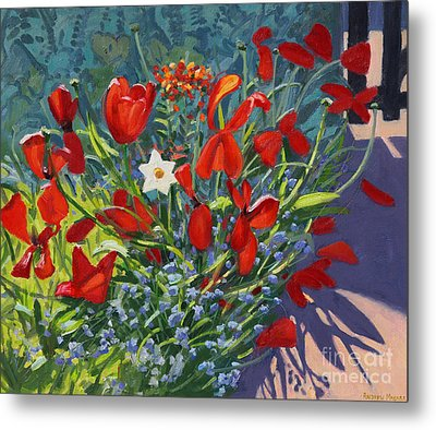 Tulips By The Gate Metal Print by Andrew Macara