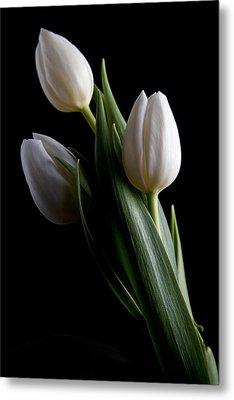 Tulips Iv Metal Print