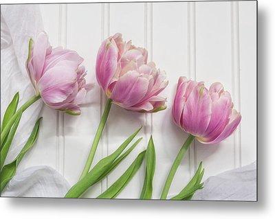 Tulips Three Metal Print by Kim Hojnacki