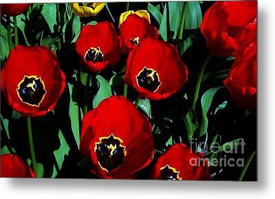 Metal Print featuring the photograph Tulips by Vanessa Palomino
