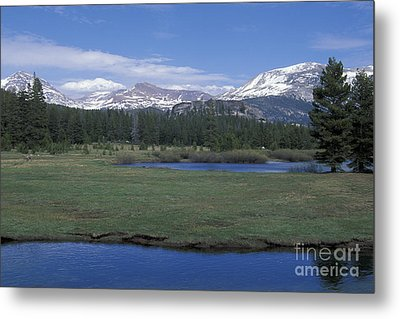 Metal Print featuring the photograph Tuolomne Meadows In June by Stan and Anne Foster