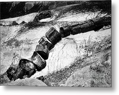 Metal Print featuring the photograph Turned To Stone by Paul W Faust - Impressions of Light