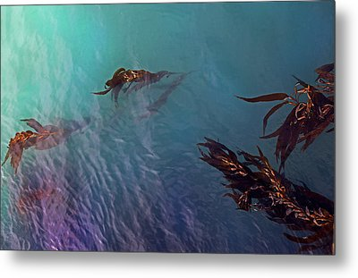Turquoise Current And Seaweed Metal Print by Nareeta Martin