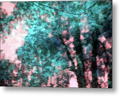 Turquoise Forest Metal Print by Carolyn Stagger Cokley