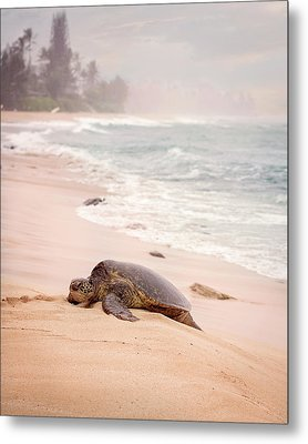 Metal Print featuring the photograph Turtle Beach by Heather Applegate
