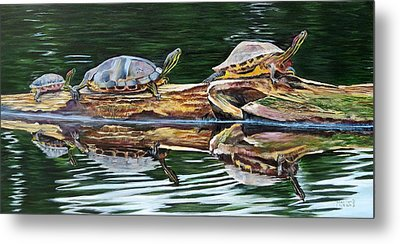 Turtle Family Metal Print