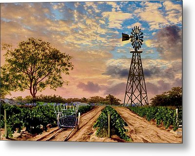 Twilight At The Vineyard Metal Print by Ron Chambers