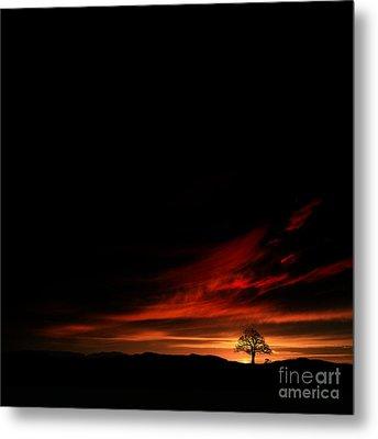 Twilight Glow Metal Print