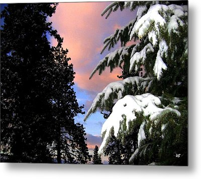 Twilight Hour Metal Print by Will Borden