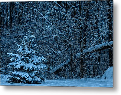 Twilight Snow Metal Print by Trey Foerster