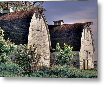 Twin Barns, Nisqually, Wa Metal Print by Greg Sigrist