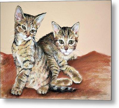 Twin Kittens Metal Print