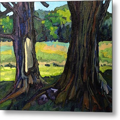 Twin Maples Metal Print by Phil Chadwick