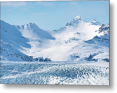 Twin Pick Metal Print by Svetlana Sewell