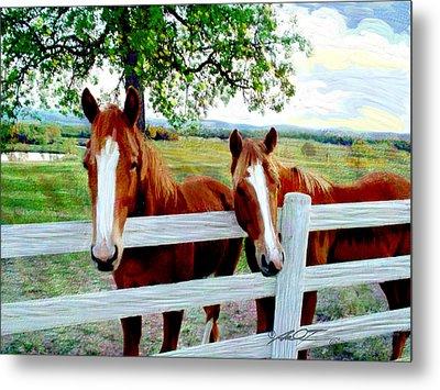 Twin Ponies Metal Print