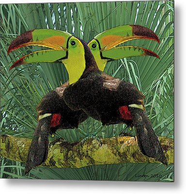 Twin Toucans Metal Print by Larry Linton