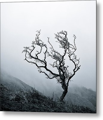 Twisted Metal Print by Dave Bowman