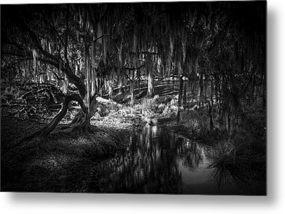 Twisted Oak Metal Print by Marvin Spates