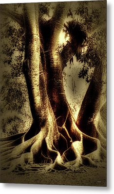 Metal Print featuring the photograph Twisted Trees by Tom Prendergast