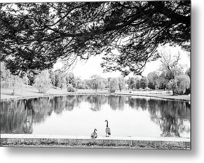 Metal Print featuring the photograph Two At The Pond by Karol Livote