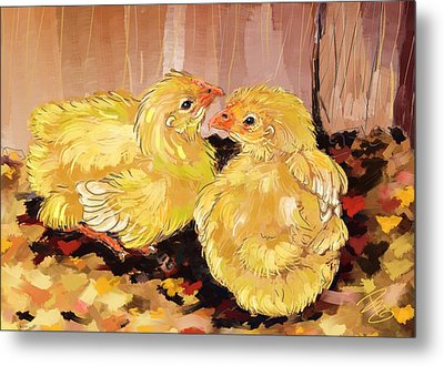 Two Baby Cornish Chicks Metal Print