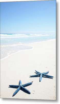 Two Blue Starfish On Tropical Beach Metal Print by Lulu