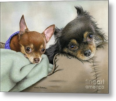Two Chi's In A Pod Metal Print by Sarah Batalka