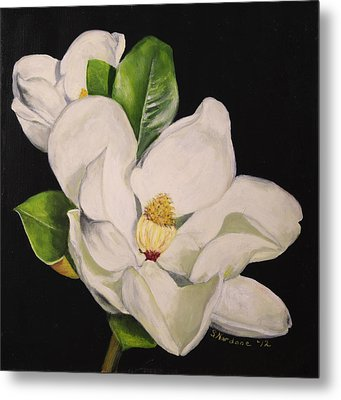 Two Magnolias Metal Print by Sandra Nardone