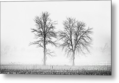 Metal Print featuring the photograph Two... by Nina Stavlund