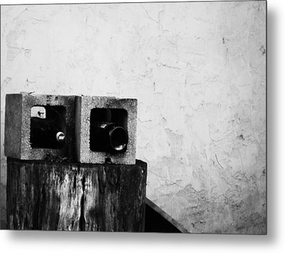 Metal Print featuring the photograph Two On The Stump by Jeff DOttavio