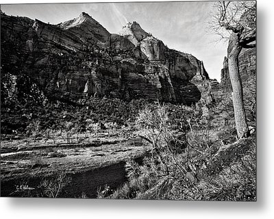 Two Peaks - Bw Metal Print by Christopher Holmes