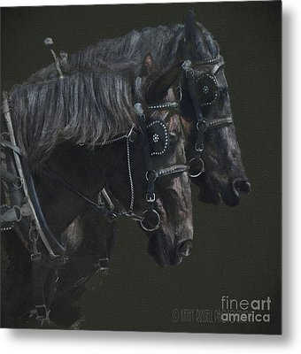 Two Percherons Metal Print