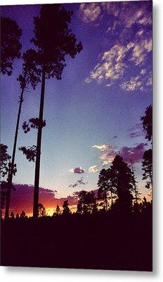 Two Pines Sunset Metal Print