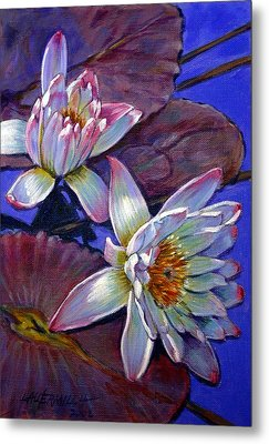 Two Pink Water Lilies Metal Print by John Lautermilch